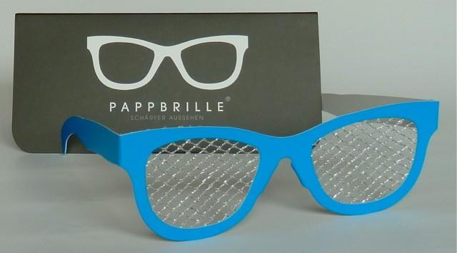 Pappbrille Maschendraht Zaun